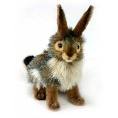 Чернохвостый заяц 3754, 23 см, Hansa