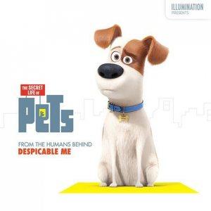 """В этом году мы увидим мультфильм """"Тайная жизнь домашних животных"""""""